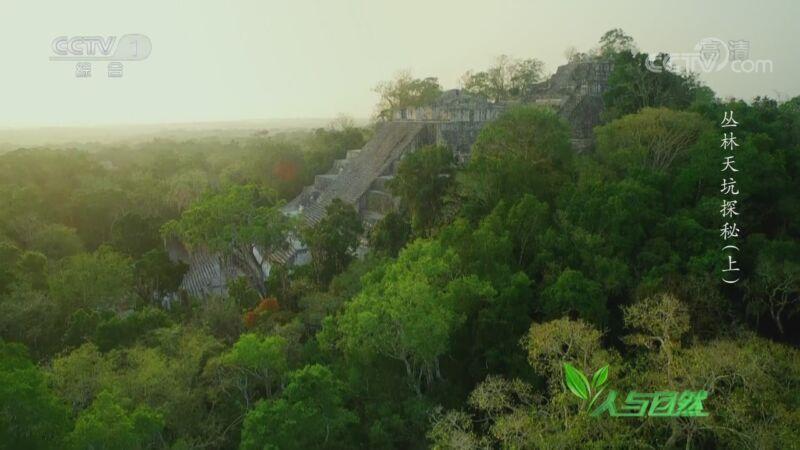 《人与自然》 20200909 丛林天坑探秘(上)