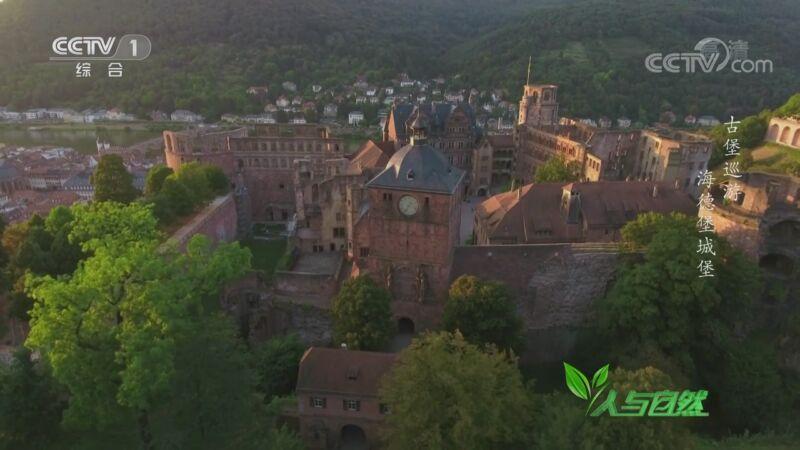 《人与自然》 20201014 古堡巡游——海德堡城堡