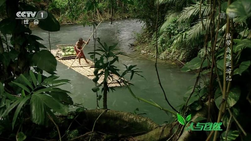 《人与自然》 20210131 热带岛屿巡游记
