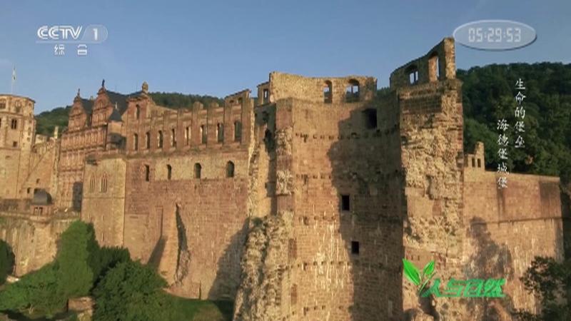 《人与自然》 20210205 生命的堡垒——海德堡城堡