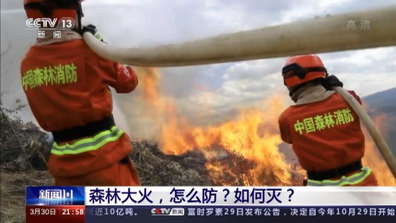 《新闻1+1》 20210330 森林大火,怎么防?如何灭?