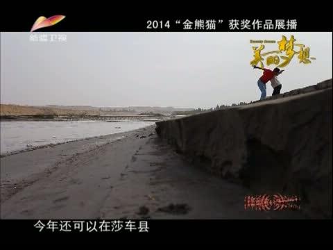 《美丽梦想》 20141211 奔腾年代 第三集 叶河欢歌