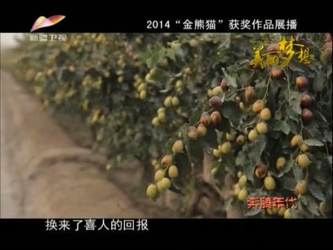《美丽梦想》 20141212 奔腾年代 第四集 水润新城