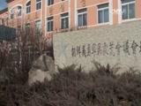 《中华民族》 20150915 阿里郎之梦 第五集 从移民到公民