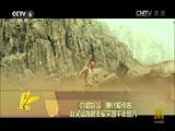 《九层妖塔》曝终极预告 赵又廷姚晨率军突围千年兽穴 00:00:24