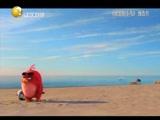 《愤怒的小鸟》预告片
