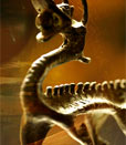 恐龙灭绝大调查