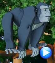 <b>3D版《金刚 重返丛林》</b><br>黑猩猩的归家梦<br><center><img src=http://p3.img.cctvpic.com/nettv/donghua/program/2011shujia/20110623/images/100625_1308811104799.jpg></center>
