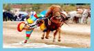 Horse Race <img src=/Library/english2008/english/image/video.gif />