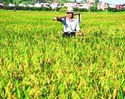 Promouvoir l'augmentation de production agricole, la croissance des revenus des agriculteurs et le développement rural