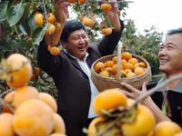 Stabiliser et développer la production agricole