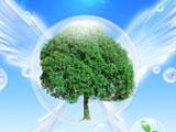 [博鳌特别观察]绿色经济的执行力