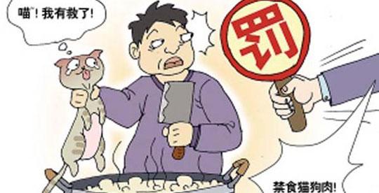农业部否认新检疫规程为非法食用狗肉开绿灯