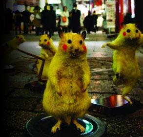日本艺术家化腐朽为神奇 用老鼠制作成皮卡丘