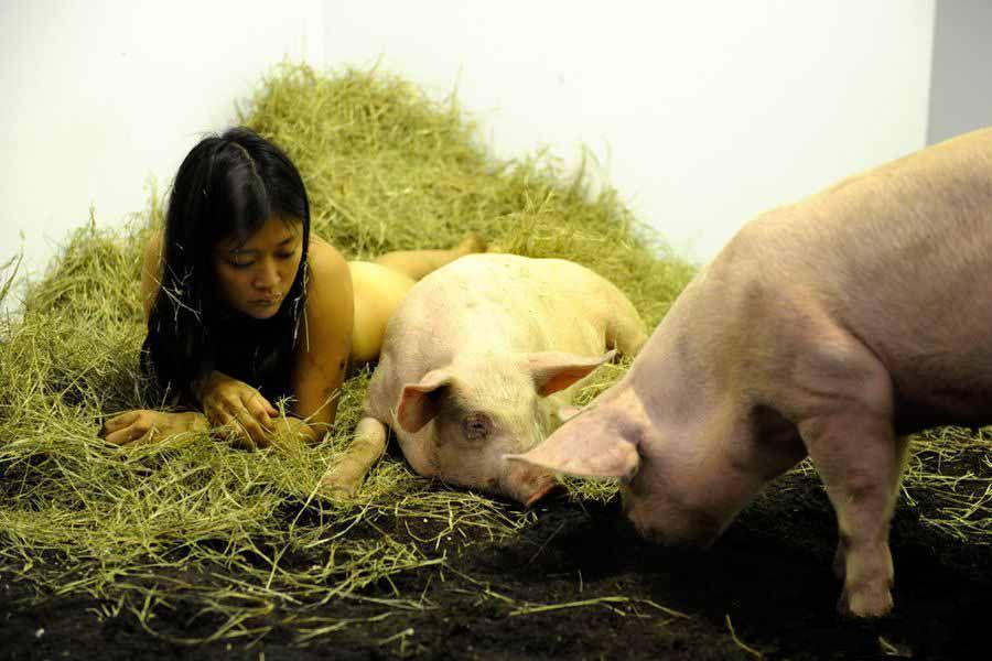 裸体艺术家与猪裸睡能证明什么呢? 水乡渔夫