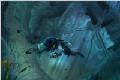 刺客信条3解放新截图 艾夫琳勇斗鳄鱼