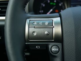 雷克萨斯-雷克萨斯GX中控方向盘图片