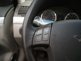 瑞麒-瑞麒G5中控方向盘图片