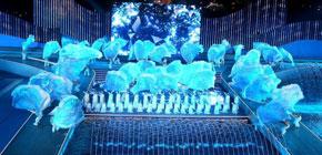 <center>上海世游赛完美闭幕 中国泳军很给力</center>