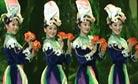 舞蹈《鸽子花开的时候》