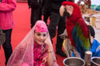 宁夏展台的美女和鹦鹉