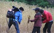 主持人和当地村民割麦子