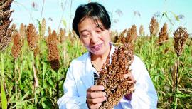 内蒙古科尔沁左翼中旗农牧业局副局长 梅园雪