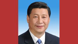 习近平报道集