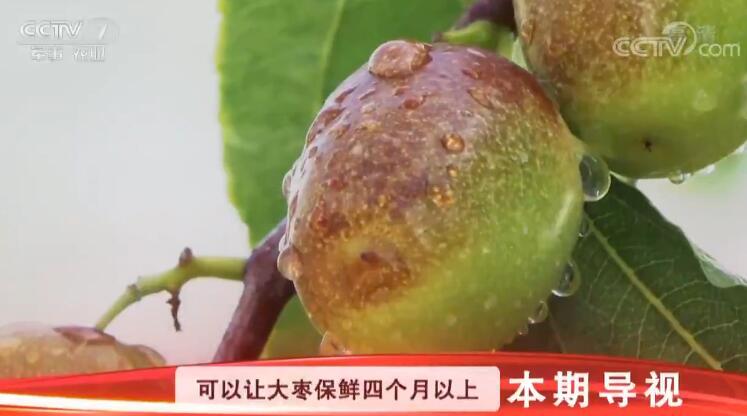 [科技苑]省电多 保鲜长 这个冷库不一般 20190227