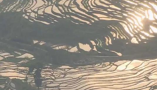 《远方的家》 20200318 世界遗产在中国 红河哈尼梯田