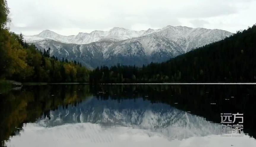 《远方的家》 20200522 行走青山绿水间 守护高原明珠