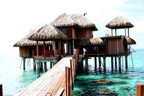 这是大溪地波拉波拉岛的艾美酒店 我管这里叫做海龟酒店