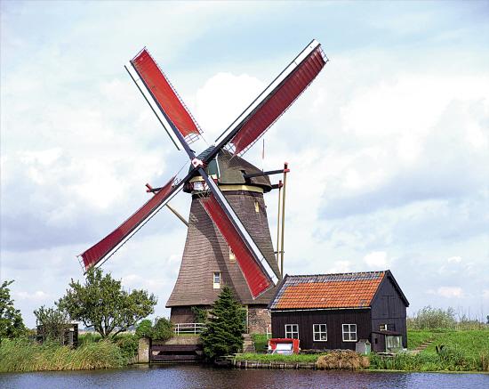 荷兰风车 全景/供图图片