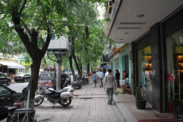 三亚的街景:满眼的绿树在多数北方城市还一派素萧的季节显得尤为珍贵。