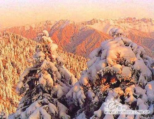 端午节清凉游 探秘成都西岭雪山