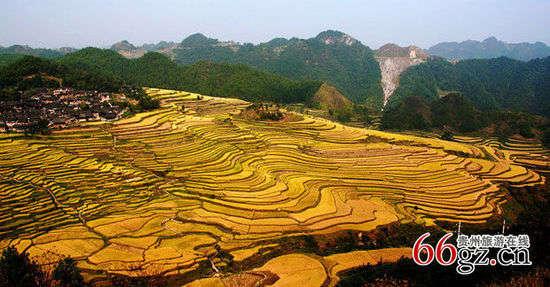 贵州十大梯田 藏在深山中的绝美风光