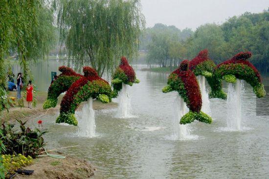 旅游频道       四,风景最优美的喷泉——上海世纪公园