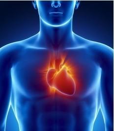 自测你的心脏年龄多少岁 4招保命护心脏
