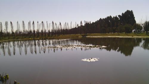 滇池海东湿地