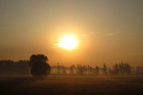 乡村的清晨