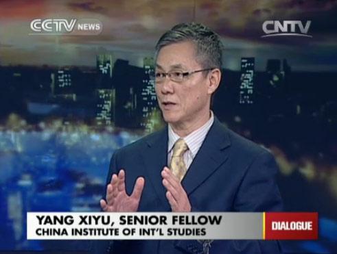 Yang Xiyu, Senior Fellow of Chinese Institute of Int