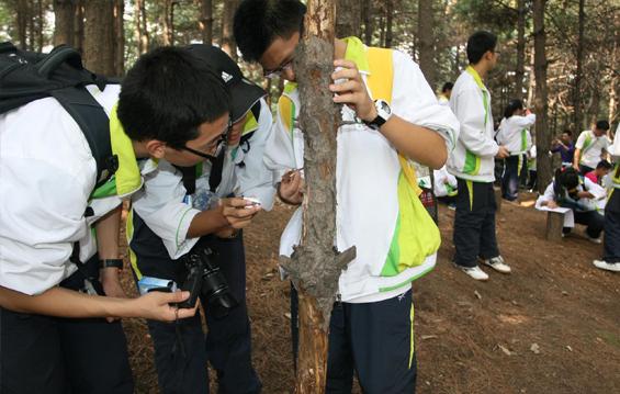 森林科普小实验_中国林业