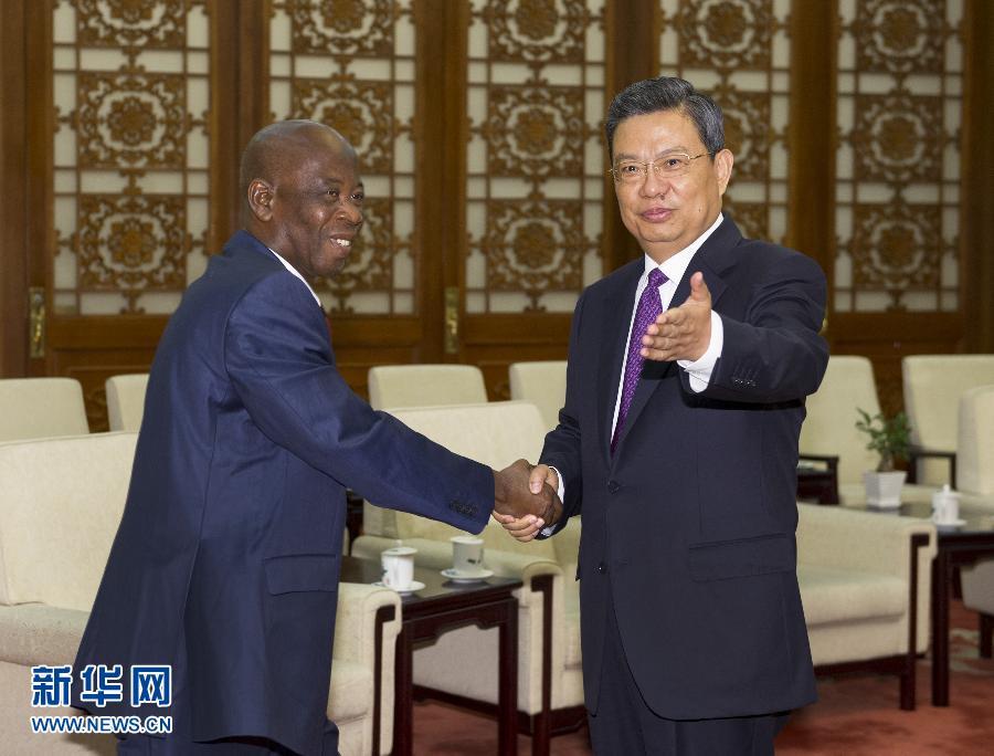 6月17日,中共中央政治局委员、中组部部长赵乐际在北京会见由马马杜·巴洛率领的几内亚人民联盟——彩虹联盟代表团。新华社记者 谢环驰 摄