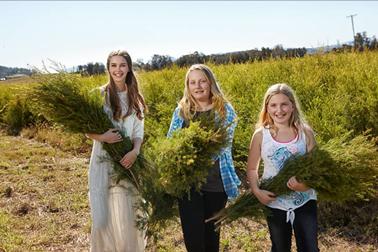 嘉媚乐:最纯粹的幸福,在爱里相遇—澳洲茶树寻香之旅