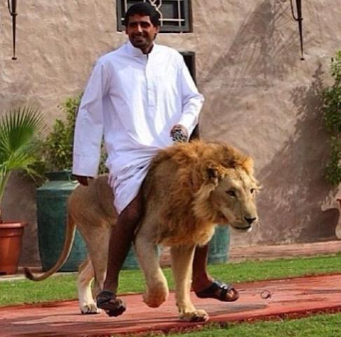 外国女人与狗做爱_沙特人不缴纳所得税,政府主要税收对象是外国公司或机构.