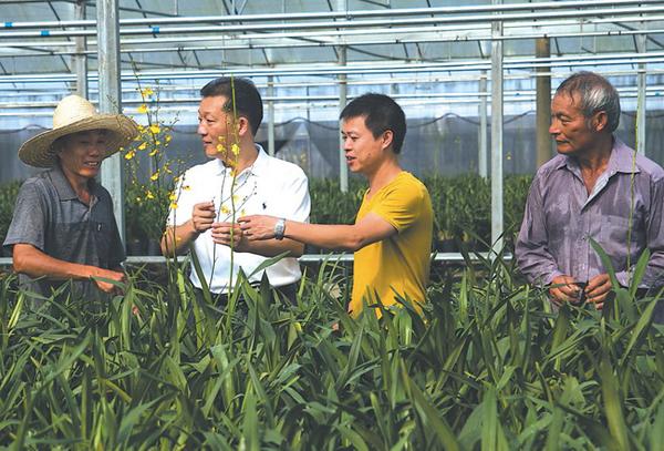 2015年6月27日,廖俊波(左二)在铁山镇东涧花卉基地与农民交谈。徐庭盛 图