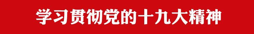 学习贯彻党的龙8国际娱乐官方网站大精神