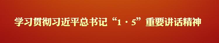"""学习贯彻习近平总书记""""1·5""""重要讲话精神"""