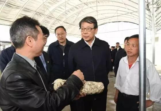 陈希在台江县方召镇考察食用菌棒厂,了解食用菌棒厂生产建设情况。