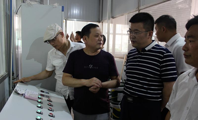 睢宁县沙集镇党委书记杨帆调研